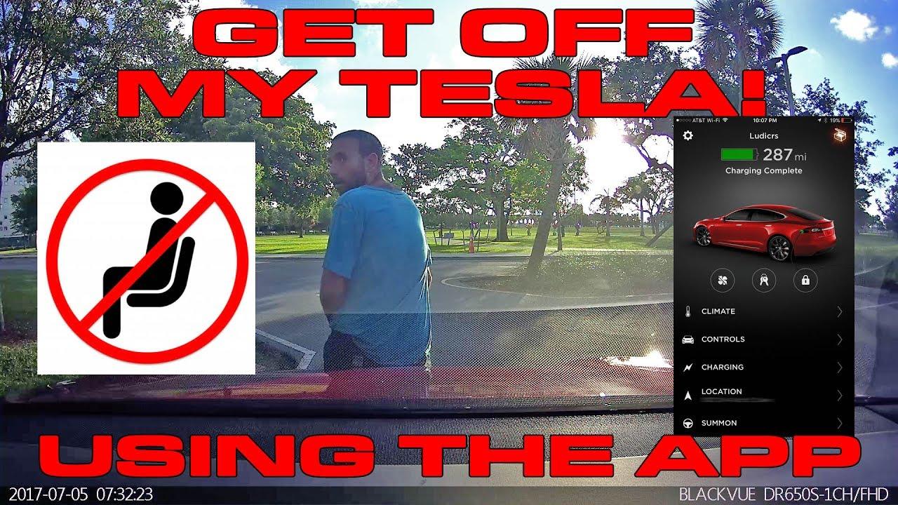 Guy Sitting On A Tesla Caught On BlackVue
