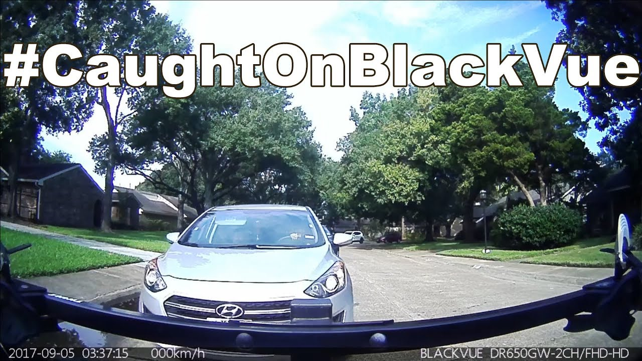 Driver Purposefully Tries To Get Hit #CaughtOnBlackVue